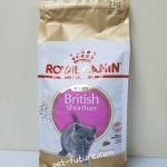 Kitten British Shorthair 2 kg. ลูกแมวบริททิส ชอร์ทแฮร์ (พร้อมส่ง) Exp.10/18