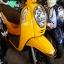 SCOOPY-I S12 วิ่ง2พันโล สีเหลืองสดใส เครื่องนิ่ม ราคา 36,000 thumbnail 3