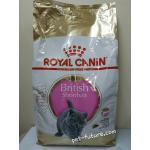 Kitten British Shorthair 10 kg. Exp.03/19 ลูกแมวบริททิส ชอร์ทแฮร์ (พร้อมส่ง)