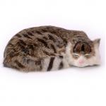 ตุ๊กตาเหมือนจริง แมวสีน้ำตาลเข้มลายเสือนอนหลับ ขนาด 27x20x6cm (Pre Order)