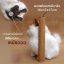 แมวเปอร์เซีย ขนาด 16x13x17cm (Pre Order) thumbnail 5
