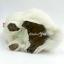 แมวเปอร์เซีย ผูกโบว์แดง ขนาด 16x10x17cm (Pre Order) thumbnail 6