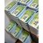 i Organic Grass™ ชุดปลูกข้าวสาลี สำหรับสัตว์เลี้ยง thumbnail 23