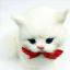 แมวเปอร์เซีย ผูกโบว์แดง ขนาด 16x10x17cm (Pre Order) thumbnail 4