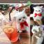 แมวเปอร์เซีย ผูกโบว์แดง ขนาด 16x10x17cm (Pre Order) thumbnail 10