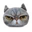 หมอนหน้าน้องแมว 3 มิติ ขนาด 50x40 cm (พร้อมส่ง+Pre) thumbnail 5