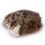 ตุ๊กตาเหมือนจริง แมวสีน้ำตาลเข้มลายเสือนอนหลับ ขนาด 27x20x6cm (Pre Order) thumbnail 4