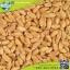 เมล็ดข้าวสาลี นำเข้าคัดพิเศษ ปลอดสารพิษ 500 กรัม thumbnail 3