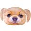 หมอนหน้าน้องหมา 3 มิติ ขนาด 50x40cm (พร้อมส่ง+Pre-Order) thumbnail 9
