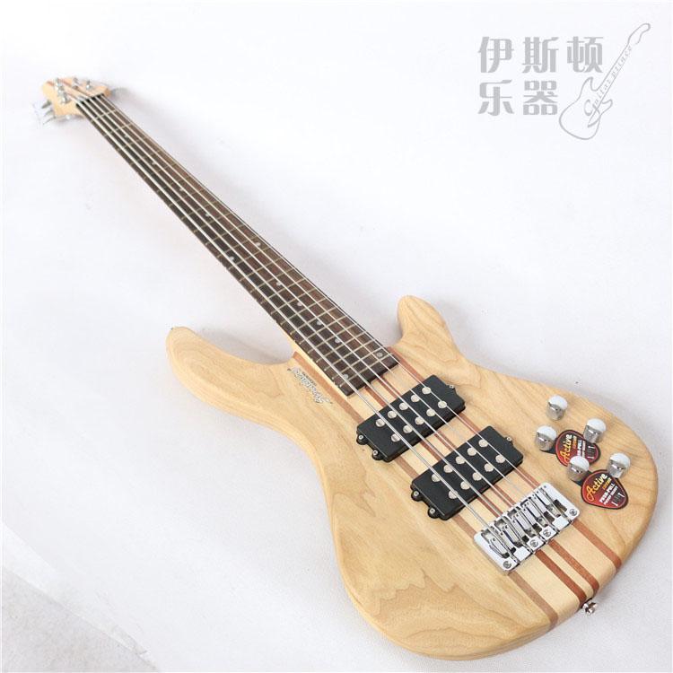 Steiberg Active Bass 5 Strengs
