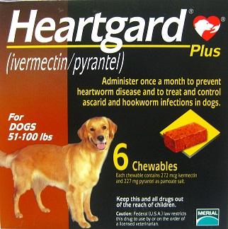 Heartgard Plus 6 เม็ด สำหรับ นน.สุนัข 22-45 กิโลกรัม Exp.04/20