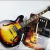 Gibson ES335 หลายสี