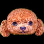 หมอนหน้าน้องหมา 3 มิติ Teddy (พร้อมส่ง)