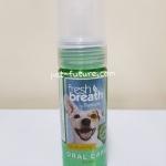 FRESH BREATH instant fresh foam Exp.11/21