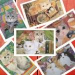 โปสการ์ดรูปแมว จำนวน 24 ใบ ภาพไม่ซ้ำกัน