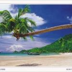 โปสการ์ด หาดทรายรี เกาะเต่า จังหวัดสุราษฎร์ธานี /ทะเล/ชายหาด