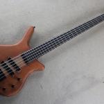 Warwick 5 strings Bass