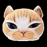 หมอนหน้าน้องแมว 3 มิติ ขนาด 50x40cm