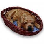 ตุ๊กตาสุนัข สำหรับตั้งโชว์ ชาเป่ยนอนในตะกร้า (Pre Order)