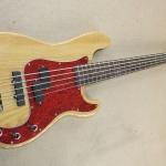 Fender PJ Bass 5 Strings