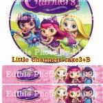 Little Charmers cake3+B