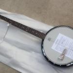 Banjo S101