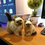 แมวเปอร์เซีย แมวจำลองเหมือนจริง (งานแฮนเมด) Pre-Order