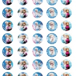 frozen wafer topper 3cm