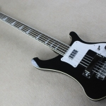 Rickenbacker 5 Strings Bass