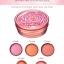 Skinfood Rose Essence Blusher # 4 Peach thumbnail 6