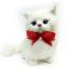 แมวเปอร์เซีย ผูกโบว์แดง ขนาด 16x10x17cm (Pre Order)