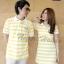 เสื้อคู่โปโล ไซส์ xl ไซส์ใหญ่ สีเหลืองริ้วขาวออกแนวสปอร์ต thumbnail 2