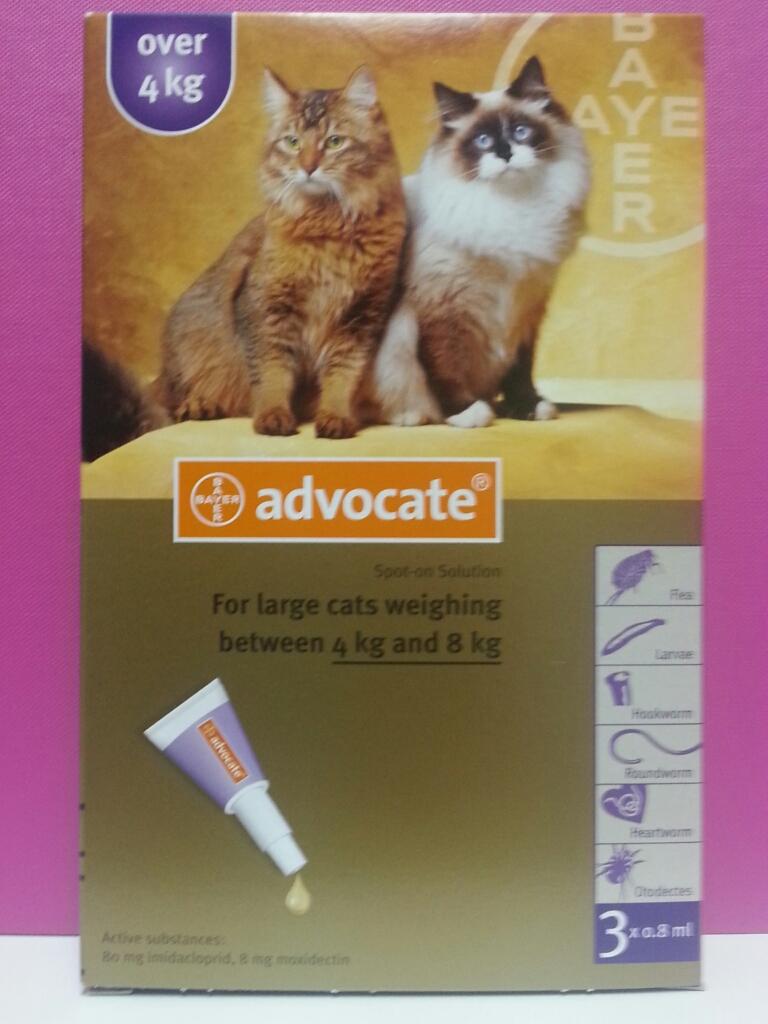 advocate dog flea treatment instructions