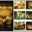ที่นอนเป่าลมในรถสำหรับเด็ก / เบาะลมยางนอนในรถ ส่งฟรี!!! thumbnail 4