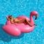 Intex Mega Pink Flamingo แพยางเป่าลมนกฟลามิงโก้ตัวใหญ่ สีชมพู ตัวใหญ่ แถมสูบลม ส่งฟรี kerry!! thumbnail 3