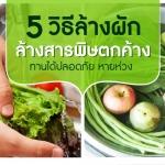 5 วิธีล้างผัก ปลอดภัย หายห่วง