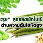 มะรุม สุดยอดผักใบเขียว ต้านความดันโลหิตสูง