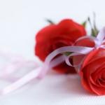 ความหมายของดอกกุหลาบ ที่มอบให้คนพิเศษในวันวาเลนไทน์