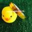 เทปแฟนซี ลาย Daily Fresh สีส้ม (50 หลา) thumbnail 1