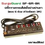 SurgeGuard SP-6M-BK เครื่องกรองไฟสวิตซ์แยก สำหรับทีวี เครื่องเสียง โฮมเธียร์เตอร์