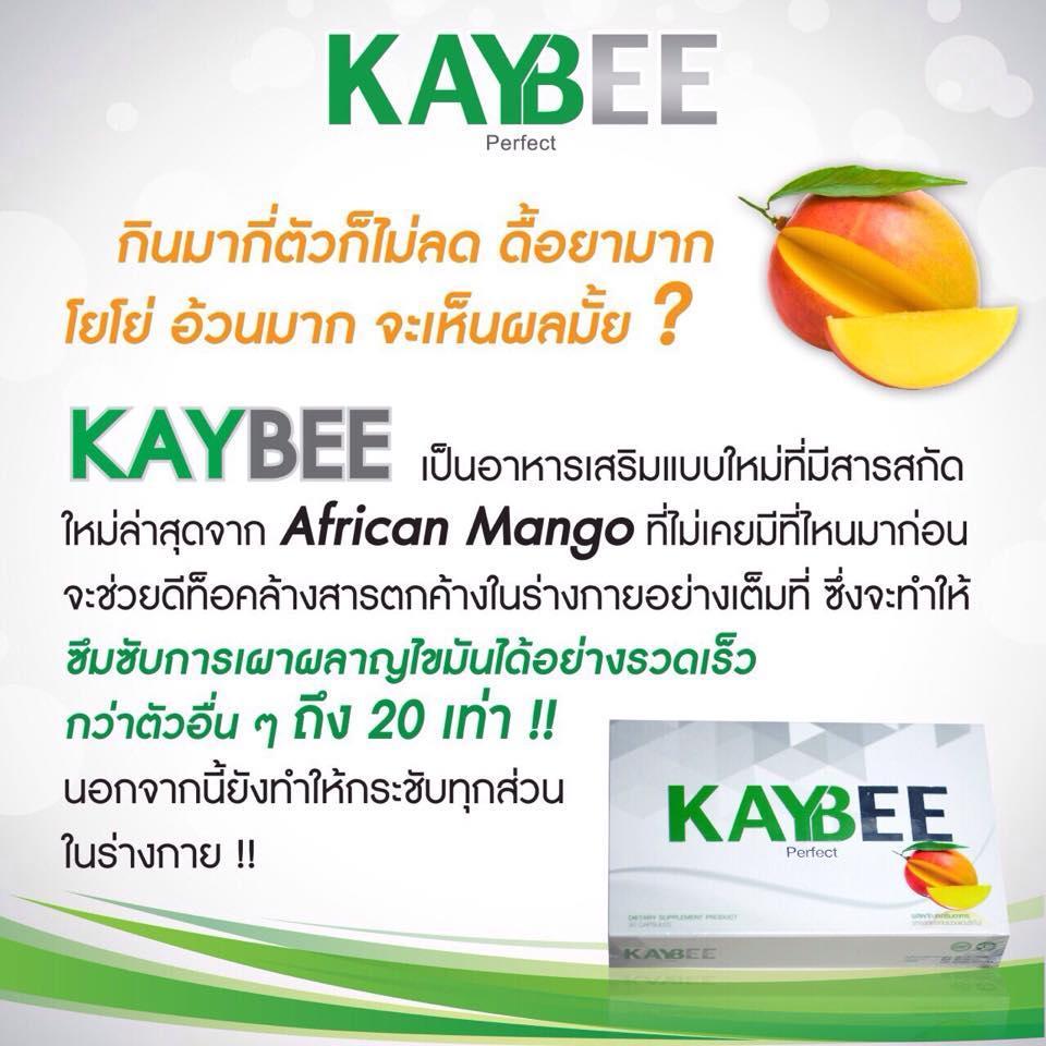 Kaybee Perfect ราคา